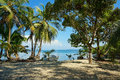 Peaceful caribbean beach with shade trees and boat a panama central america Royalty Free Stock Image