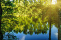 A peaceful forest scene with a quiet water lake pond surface with surrounding trees reflection Royalty Free Stock Photo
