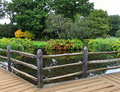 Peaceful garden with lily pond lush and wooden footbridge in early autumn Royalty Free Stock Photography