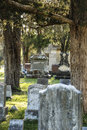 Peaceful graveyard with trees and headstones Royalty Free Stock Photo