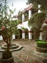 Peaceful hidden garden in mexico colonial white walls Stock Photography