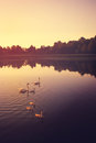 Peaceful Lake Royalty Free Stock Photo