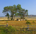 A peaceful landscape in idaho tumbledown farm house pastoral setting the countryside Royalty Free Stock Images