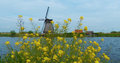 Peaceful landscape windmill kinderdijk netherlands Stock Photo
