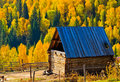 Peaceful rural village against autumn forest Royalty Free Stock Photos