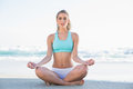 Peaceful slender blonde in sportswear meditating Royalty Free Stock Photo