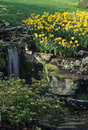 Peaceful Spring Rock Garden Royalty Free Stock Photography