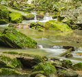 Peaceful Mountain Trout Stream Royalty Free Stock Photo