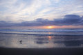 Peaceful Winter Pacific Sunset Royalty Free Stock Photo