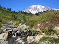 Peacefull waterfall at skyline trail in mount rainier national park the usa Royalty Free Stock Image