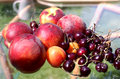 Peach and cherry washed on a table dinner time Royalty Free Stock Images