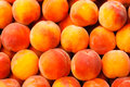 Peach fruit background close up Stock Image