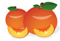 Peach, Fruit, illustration Royalty Free Stock Photo