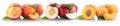 Peach nectarine apricot slice half fruit fruits isolated on whit Royalty Free Stock Photo