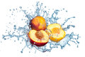 Peach in spray of water juicy with splash on white background Stock Photo