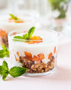 Peach trifle with crunchy toasted oats and dried fruit Stock Photography