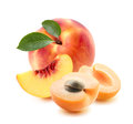 Peach whole, apricot pieces isolated on white background Royalty Free Stock Photo