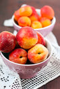 Peaches and apricots bowl of bowl of Royalty Free Stock Photography