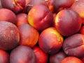 Peaches background of many ripe Stock Photos