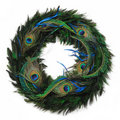 Peacock feather wreath Stock Images