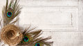 Peacock feathers and a nest on a antique door Royalty Free Stock Photography
