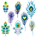 Peacock Feathers Vector Illust...