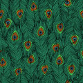 Peacock s feathers pattern seamless with hand drawn Royalty Free Stock Photo