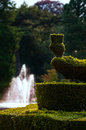 Peacock shaped hedge topiary and water fountain at outdoors garden park