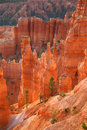 Peak in Bryce Canyon Royalty Free Stock Photo