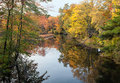 Peak fall foliage reflected on calm pond water Royalty Free Stock Images