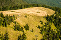 Peak of the hill