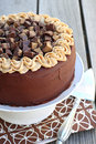 Peanut butter chocolate cake with cup topping Royalty Free Stock Photo