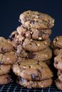 Peanut Butter Chocolate Chip Cookies Stacked on Wire Rack Royalty Free Stock Photo