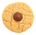 Peanut Butter Chocolate Cookie Royalty Free Stock Photo
