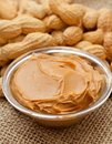 Peanut butter and peanuts on burlap Royalty Free Stock Image