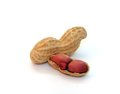 Peanuts isolated on white background Royalty Free Stock Photos