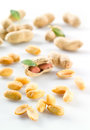 Peanuts. Isolated on white background. Royalty Free Stock Photo