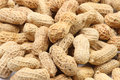 Peanuts macro 5 Royalty Free Stock Photos