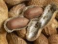 Peanuts opened peanut in unpeeled peanut background Royalty Free Stock Photos