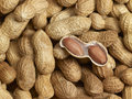 Peanuts opened peanut in unpeeled peanut background Royalty Free Stock Photography