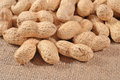 Peanuts in a sacking background Royalty Free Stock Photo
