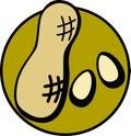 Peanuts vector illustration Stock Image