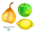 Pear, apple, lemon watercolor illustration on white background, hand drawn sketch food ingredient, organic natural