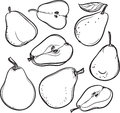 Pear. Line drawing of a pear.