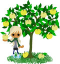 Pear tree a girl who stands still under the Royalty Free Stock Photos