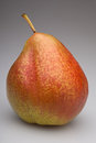 Pear yellow and red colors on the gray background Stock Photos