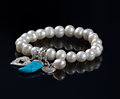 Pearl charm bracelet silver love heart angel wings turquoise tooth Stock Image