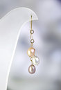 Pearl earring women s jewelry of gold and pearls Stock Photos