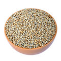 Pearl millet Stock Photos