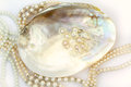 Pearl necklace with natural pearls in a oyster shell Royalty Free Stock Photo